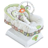 fisher_price_soothing_motions_glider-(1)